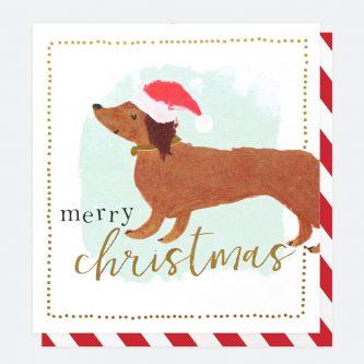 charity christmas cards pack of 8 caroline gardner PNT580 1 1800x1800